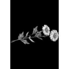 Купить Гравировка цветы gravfl3 - Минск, Бобруйск
