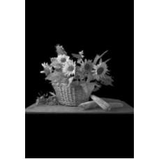 Купить Гравировка цветы gravfl9 - Минск, Бобруйск