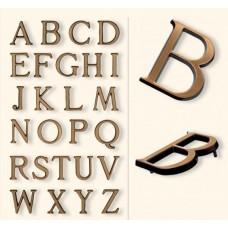 Буквы rom